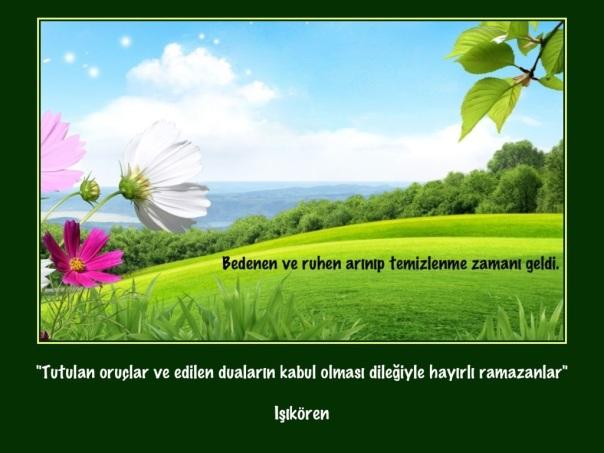 20130709-090349.jpg